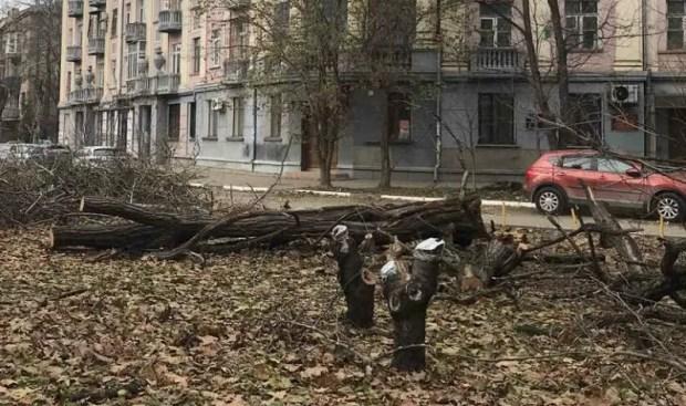 «Лесоповал» в Симферополе, ради… коллектора