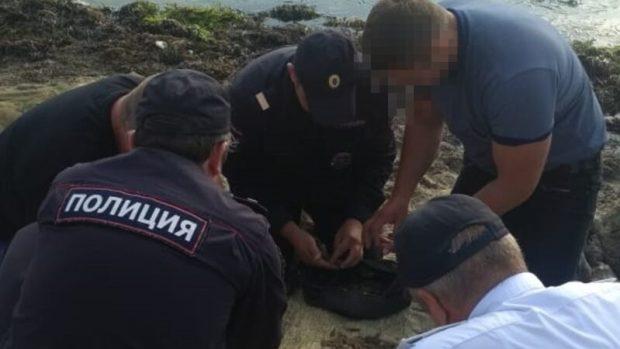 В Крыму задержали браконьеров. Ловили креветок в Донузлаве