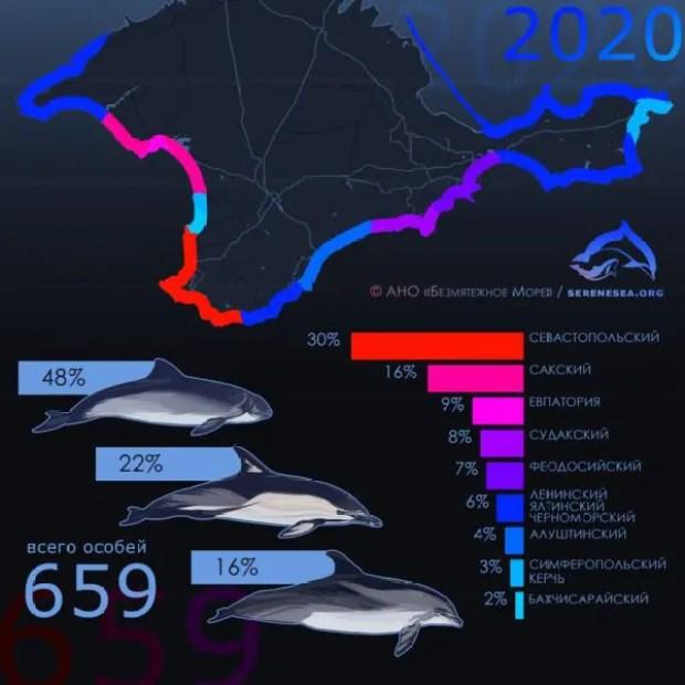 За последние 4 года в Крыму зафиксировано почти две тысячи выбросов дельфинов на берег