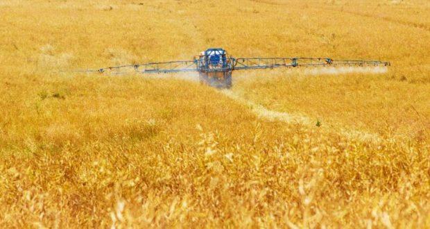 В 2020 году крымские фермеры и сельхозкооперативы получили субсидий на 260 миллионов рублей