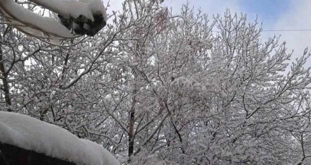 Где в Крыму выпало больше всего снега
