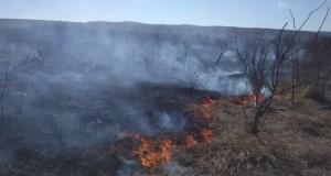 В Крыму практически ежедневно тушат сухую траву