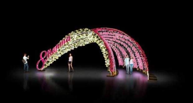 К празднику 8 марта в Симферополе установят новую инсталляцию
