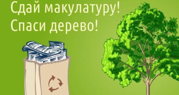 В Крыму анонсируют эко-марафон «Сдай макулатуру – спаси дерево»