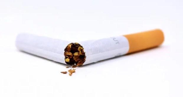 Торговля табачными изделиями в 2021 табак в сочи оптом
