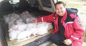Крымчанин получил от государства 250 тысяч рублей на открытие кроличьей фермы
