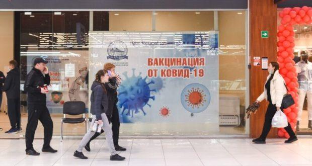 В пунктах вакцинации в т/ц Севастополя уже привилось порядка 500 человек