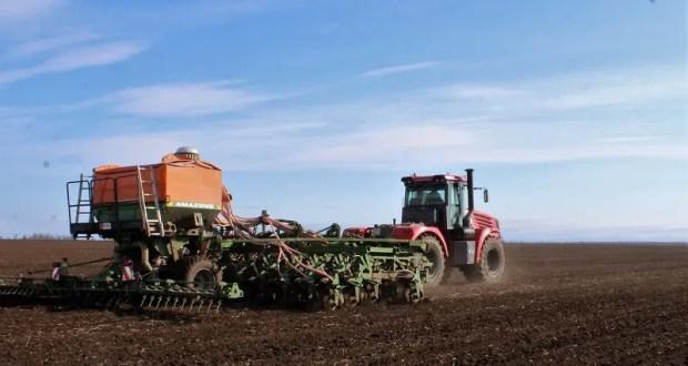 Крымские аграрии завершили сев яровых зерновых культур