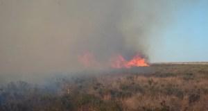 В Севастополе, на мысе Фиолент загорелась трава