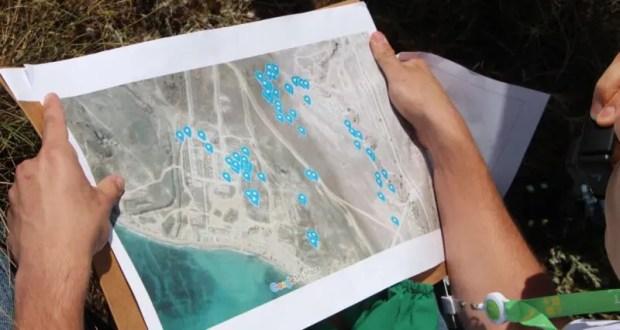 Минприроды Крыма поможет разработать концепцию озеленения арт-кластера «Таврида»