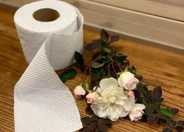 Рулоны мягкие, прочные, а еще белоснежные. Поговорим о бумажных полотенцах и туалетной бумаге