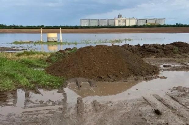 В Крыму из-за дождей приостановлена уборка зерновых