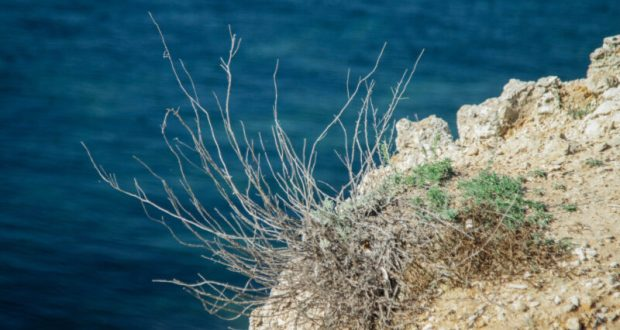 В Севастополе погиб мужчина, прыгнув со скалы в море