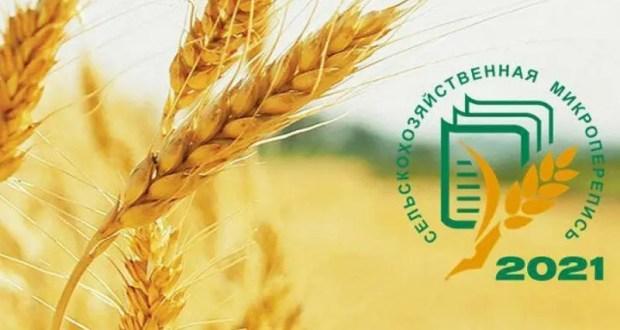 Первая Всероссийская сельскохозяйственная микроперепись: в Крыму – 40 тысяч подворий