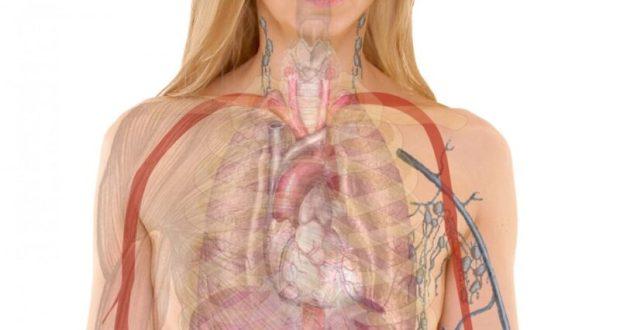 В КФУ нашли способ лечения побочного эффекта онкотерапии