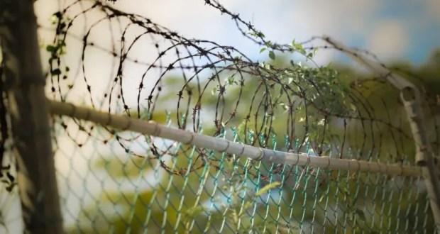 Официально: Росреестр разъяснил порядок определения границ земельного участка