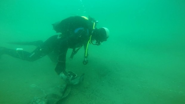 В море, у берегов Феодосии обезвредили стокилограммовую авиабомбу