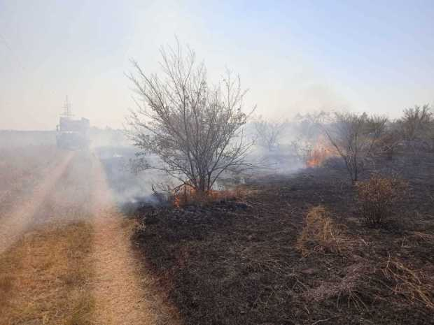 В Крыму пожарные каждый день тушат по десятку возгораний сухой растительности