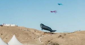 Гигантский кит, осьминоги и скаты – над «Тавридой.АРТ» запустили в небо сотню летающих змеев