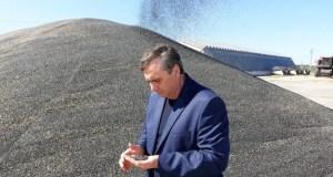 Аграрии Крыма намолотили более 17 тысяч тонн подсолнечника