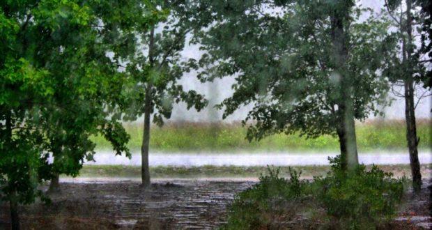 Погода в Крыму - небольшие дожди