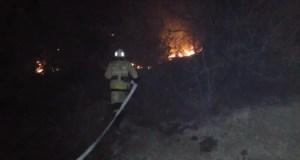 Крымские пожарные ликвидировали возгорание лесной подстилки в Бахчисарайском районе