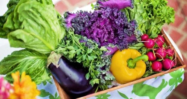 Мнение: чем обусловлен рост цен на овощи