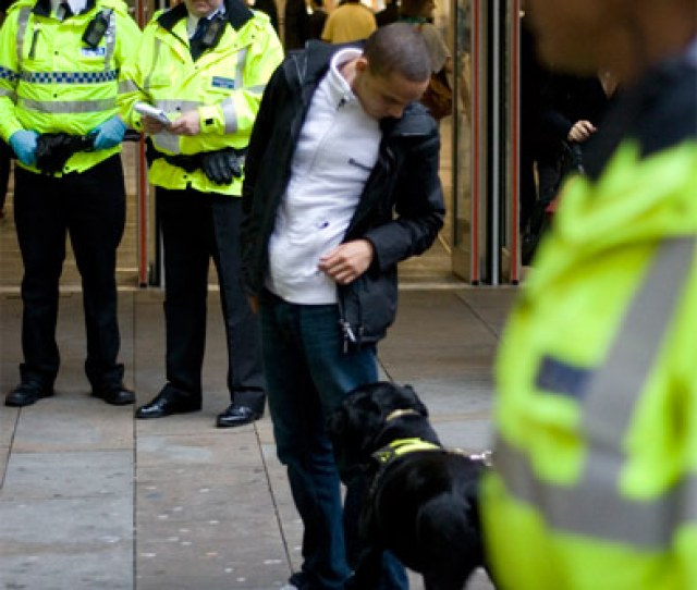 A Sniffer Dog At Work It Gets A Biscuit You Go To Jail