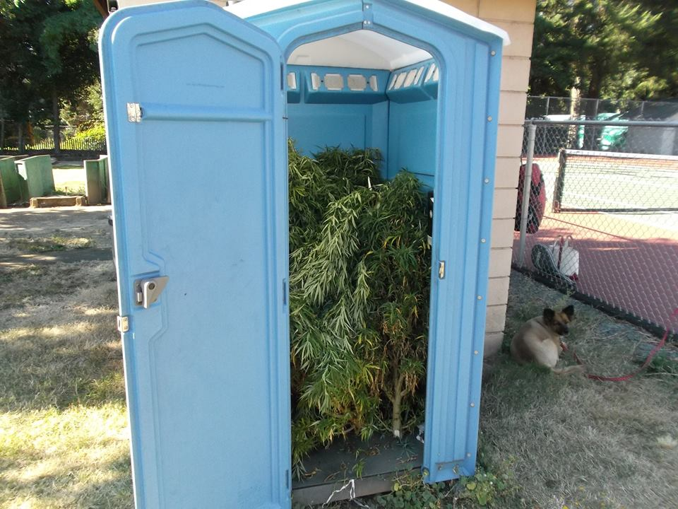 Weed abandoned in Porta-Potty in Rogue River