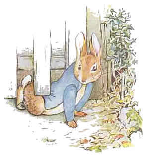 https://i0.wp.com/criminalbrief.com/wp-content/uploads/2009/09/Peter-Rabbit-4.jpg