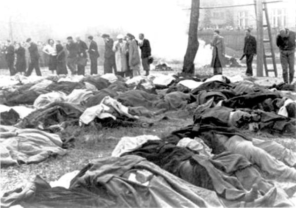 Июнь 1941-го. БССР. Эвакуация тюрем