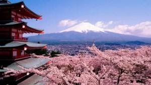 Fuji-Turismo-Japão-Bonito