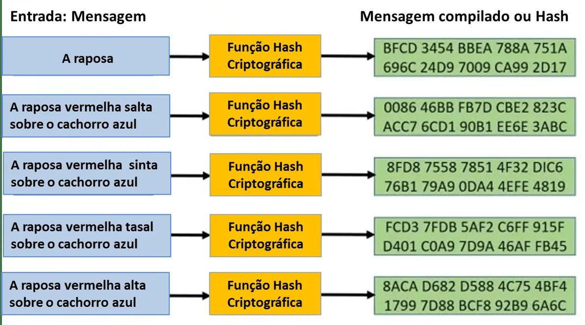 Criptográfica-Função-Hash