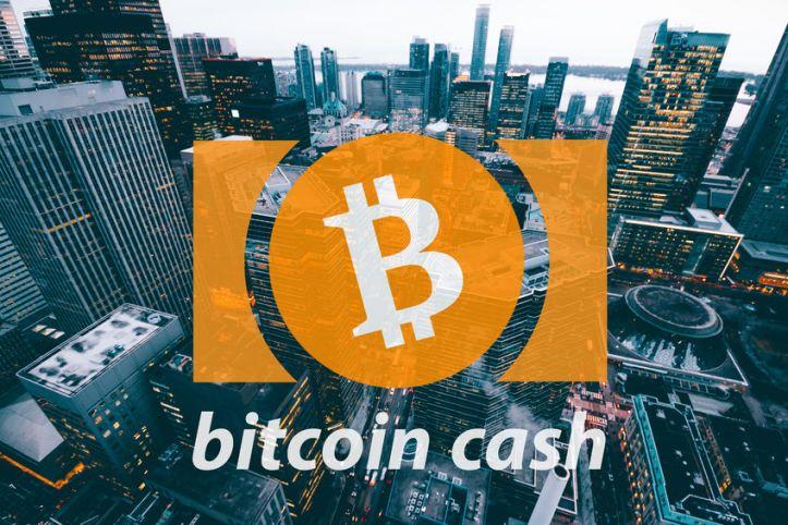Bitcoin-Cash-Token-del-dia-130218