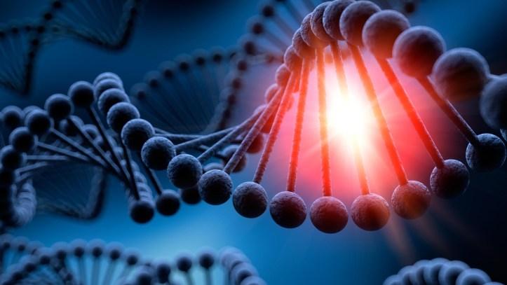 ADN Sintetico - Bill Gates 2