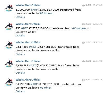 Alertas de Whale Alert