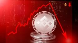Binance Coin lucha por no caer en la zona de soporte clave de $20