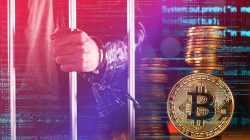 Bitcoin: ¿Nos tomamos estos dichos con humor?