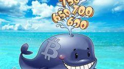 Ballena cripto mueve $934 millones en Bitcoins
