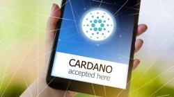 Cardano en review