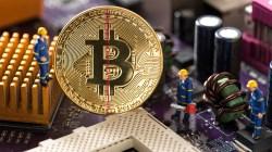 Halving; Como indicador del precio de Bitcoin