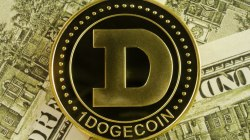 Dogecoin 2020: ¿Qué dicen los expertos?