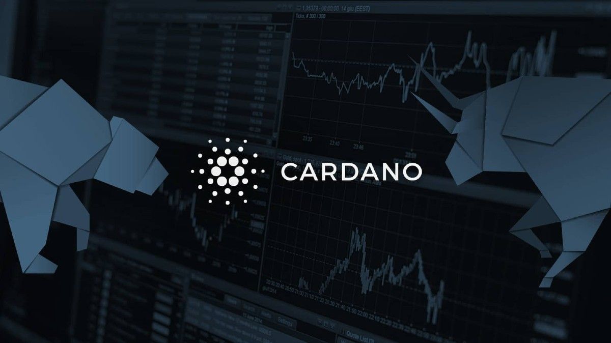 Reviewing Cardano´s Impressive First Semester