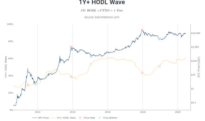 Imagen del indicador 1Y + HODL Wave de Look Into Bitcoin.