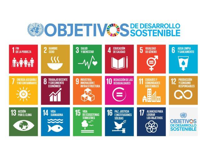 Objetivos de Desarrollo Sostenible (ODS). Fuente: Organización de Naciones Unidas (ONU)
