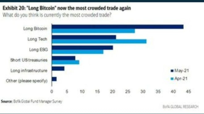 """""""Long Bitcoin"""" Fuente: BofA Global Fund Manager Survey"""