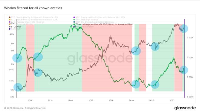 Comportamiento de las ballenas de Bitcoin. Fuente: Blockware Intelligence.