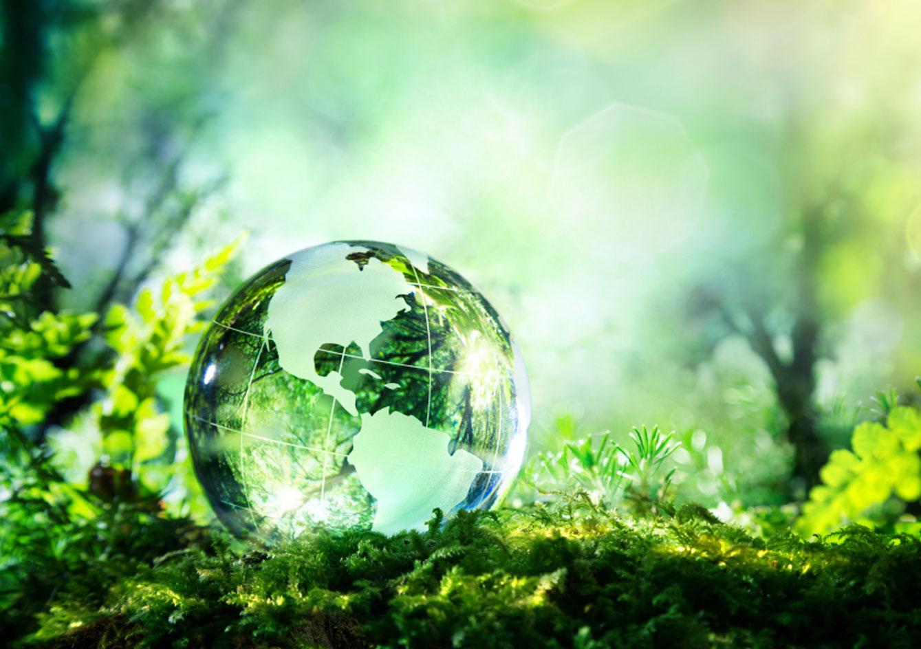 Prioritize Environmental Safety