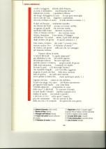 Copia di Scansione 19