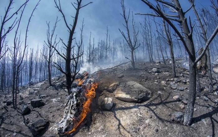 Ενδείξεις ύφεσης φωτιάς στην Αττική